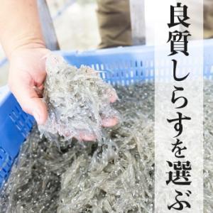 生しらす(生シラス)100g|静岡県産|marugen|04