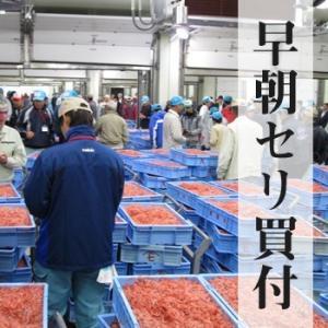 乾燥桜海老(干し桜えび)30g 3袋 送料無料 ネコポス対応 marugen 02