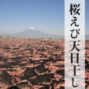 乾燥桜海老(干し桜えび)30g 3袋 送料無料 ネコポス対応 marugen 05
