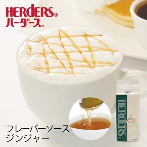 ハーダース カフェ用フレーバーソース ジンジャー 500m ドリンク コーヒー アイス パンケーキ シロップ ラテ ミルク トッピング マキアート marugeninryo