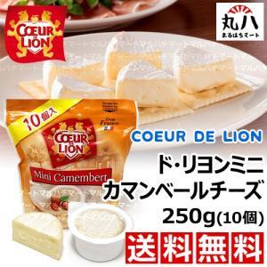 カマンベールチーズ 250g(10個)|maruhachimart