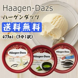★クール便★送料無料★ハーゲンダッツ★haagen-dazs...