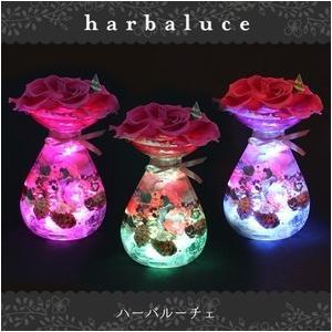 ハーバルーチェ【送料無料】専用クリアケース付 ハーバリウム ライト プリザーブドフラワー ギフト 枯れない maruhana-flower