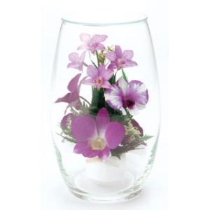 オーバルオーキッドアレンジLAV ボトルフラワー【送料無料】専用白化粧箱付お供えプリザ maruhana-flower