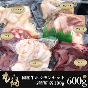 肉 国産牛 牛肉 ホルモンセット 600g センマイ ハツ マメ テッチャン コリコリ アカセン 冷凍配送|maruhuku