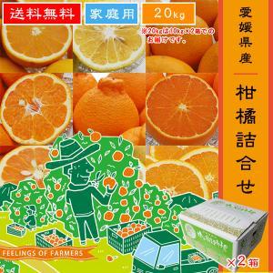 """【柑橘詰合せ 20kg(10kg×2箱でのお届けです。)】 愛媛県・宇和島産 """"ご家庭用"""" 送料無料"""
