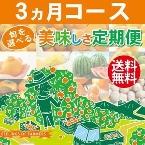 [商品内容] ■商品名 :旬を選べる美味しさ定期便 3ヵ月コース ■品質  :秀品(※注1) ■用途...