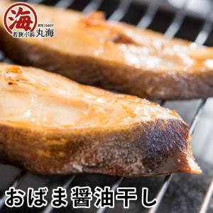 サーモン イワシ ブリ サバ カレイ 干物 ひもの 醤油干し おばま醤油干 漣 さざなみ marukai