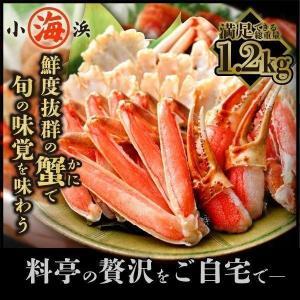 カニ かに 蟹 ズワイガニ ズワイガニ カット生ずわい蟹 1kg 総重量1.2kg前後 化粧箱 ギフト|marukai
