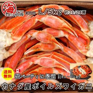 カニ かに 蟹 ズワイガニ ボイルズワイガニ カナダ産 5kg L|marukai