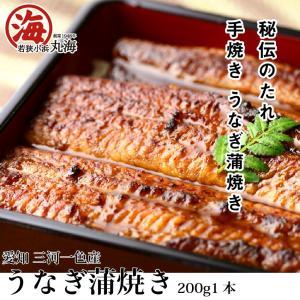 うなぎ ウナギ 鰻 蒲焼き 鰻蒲焼き 愛知県 三河一色 marukai