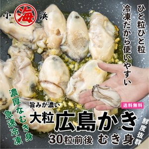 牡蠣 カキ かき 生牡蠣 生がき ワンランク上 広島県産 1Kg  解凍後 850g 2L ジャンボサイズ|marukai