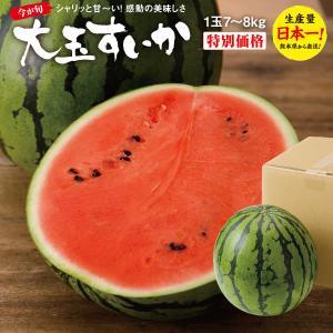すいか スイカ 熊本県産 大玉すいか 1玉 2Lサイズ (7〜8Kg) すいかの名産地 熊本から産直...