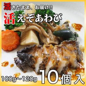 活えぞあわび養殖(韓国産)1000g(100g〜120g×10個)〔海水入・酸素入〔送料無料〕4種類のカラーレシピと保存方法付|marukatsu-onjuku11