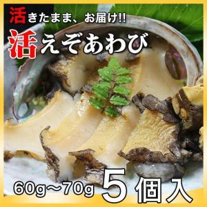 活えぞあわび養殖(韓国産)300g(60g〜70g×5個)〔海水入・酸素入〕〔送料無料〕4種類のカラーレシピと保存方法付|marukatsu-onjuku11