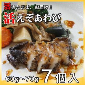 活えぞあわび養殖(韓国産)420g(60g〜70g×7個)〔海水入・酸素入〔送料無料〕4種類のカラーレシピと保存方法付|marukatsu-onjuku11
