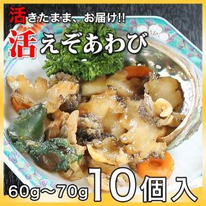 活えぞあわび養殖(韓国産)600g(60g〜70g×10個)〔海水入・酸素入〔送料無料〕4種類のカラーレシピと保存方法付|marukatsu-onjuku11