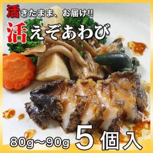 活えぞあわび養殖(韓国産)400g(80g〜90g×5個)〔海水入・酸素入〔送料無料〕4種類のカラーレシピと保存方法付|marukatsu-onjuku11