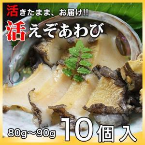 活えぞあわび養殖(韓国産)800g(80g〜90g×10個)〔海水入・酸素入〔送料無料〕4種類のカラーレシピと保存方法付|marukatsu-onjuku11
