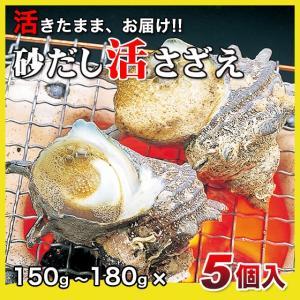 活さざえ750g(150〜180g×5個)〔海水入〕〔送料無料〕5種類のカラーレシピと保存方法付です。|marukatsu-onjuku11