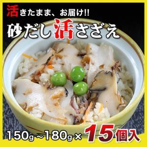 活さざえ2.25kg(150〜180g×15個)〔海水入〕〔送料無料〕5種類のカラーレシピと保存方法付です。|marukatsu-onjuku11