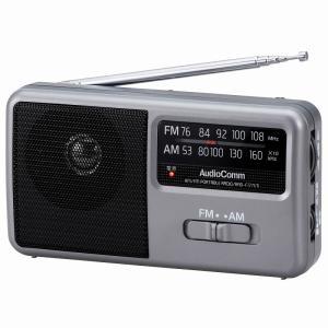 AM/FM ポータブルラジオ RAD-F177...の関連商品3
