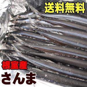 送料無料!訳ありじゃない北海道根室産トロ秋刀魚【約2kg 1...