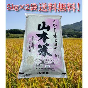ゆめぴりか 北海道産 10kg 山本米 蘭越産 極上 産地直送 令和2年度 5kg ×2|marumanma