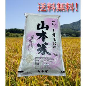 ゆめぴりか 北海道産 5kg 山本米 蘭越産 極上 産地直送 令和2年 5kg |marumanma