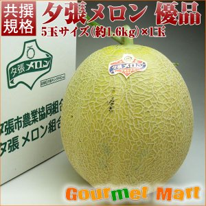 北海道産 夕張メロン(共撰)優品 約1.6kg×1玉|marumasa-hokkaido