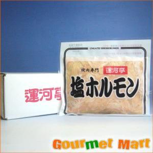 業務用 塩ホルモン (BBQ バーベキュー)焼き肉 焼肉セット|marumasa-hokkaido