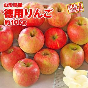 りんご 送料無料 山形県産 徳用 約10kg サイズ・品種お...