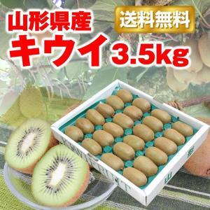 【限定100箱】キウイ フルーツ 送料無料 山形県産 3.5kg(24-33玉)