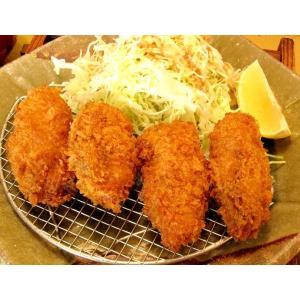 大粒カキフライ45gx20個入り 広島県産かきフライ カキフライ