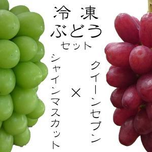 冷凍 ぶどう セット  『シャインマスカット』 100g×3...