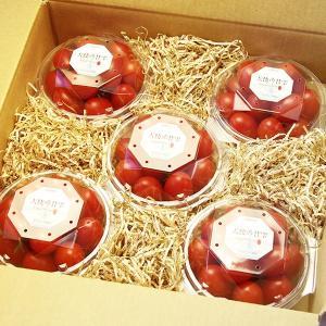 『天使の甘雫』 高糖度 アイコトマト 150g×5パック 山梨県産|marunou