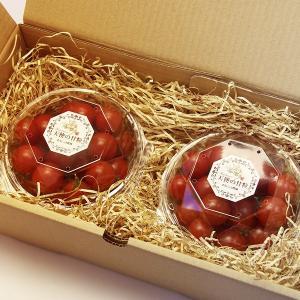 『天使の甘粒』 高糖度 フルーツトマト 200g×2パック 山梨県産|marunou