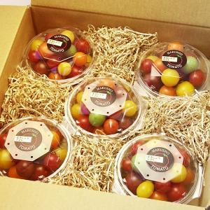 ミックストマト 150g×5パック 山梨県産|marunou