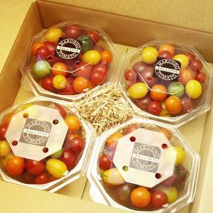 ミックストマト 300g×4パック 山梨県産|marunou