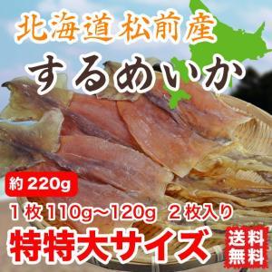 するめいか スルメ 松前産 約230g 特特大サイズ 北海道産 (110gから120g 2枚入) 送料無料|marusakaisou