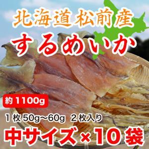 するめいか スルメ 20枚 約1.1kg 北海道松前産 50gから60g 10袋入 送料無料 marusakaisou