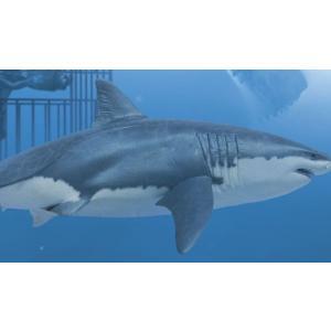 ペガサス1/18 海の最強ハンター ホホジロザメ w/ダイバー+ケージ marusan-hobby