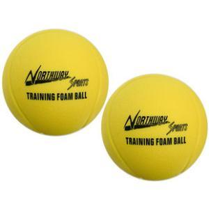 Northway トレーニングボール2P|marushinnet