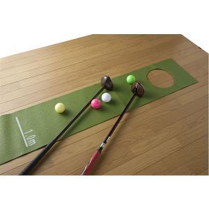 Northway パークゴルフ練習用 パターマット|marushinnet