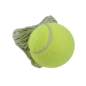 Northway 硬式テニス トレーナー用スペアボール|marushinnet