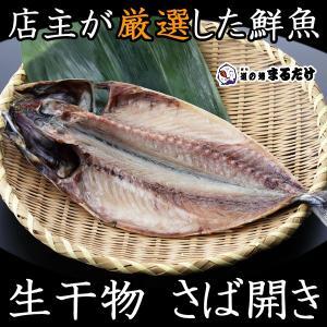 干物 さば開き 千葉県産 真サバ マサバ 寒サバ 生干物 鯖|marutake-netshop