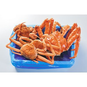訳ありボイル冷凍カニセット約3kg(中身はお得におまかせ下さい)|marutatsu