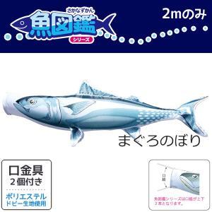 魚図鑑 まぐろのぼり 2m ポリエステル 口金具付き 徳永鯉のぼり KOT-T-152-714|marutomi-a