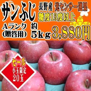 りんご フルーツ  新年 福袋セール [送料無料]  サンふ...