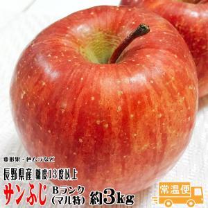 りんご フルーツ 送料無料 サンふじBランク(マル特)約3k...